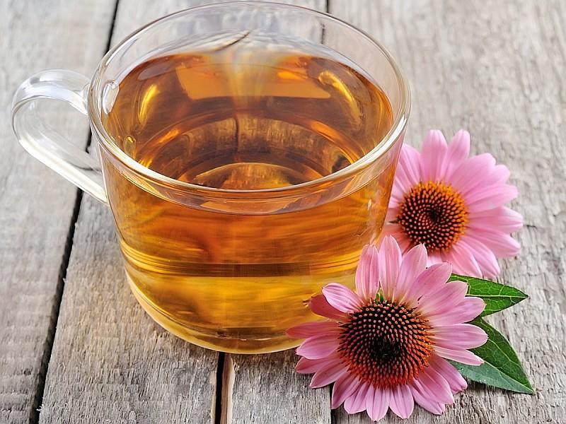 Чай от Ехинацея...