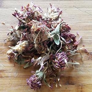 Чай от Червена детелина (Trifolium pratense)...